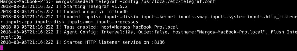 Terminal output image